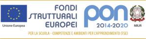 Logo PON per il footer
