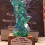 Premio cortometraggio